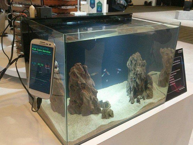 imagen samsung acuario