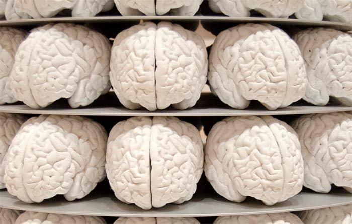 La memoria humana se ha mejorado con un implante artificial
