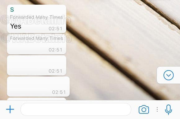 imagen whatsapp antispam