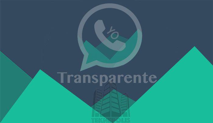 YoWhatsApp Transparente